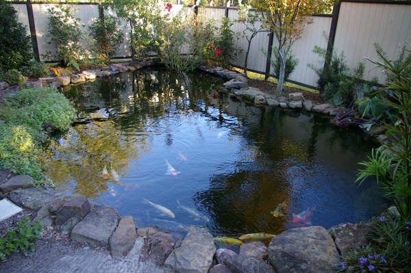 Roboguard for Fish pond installation